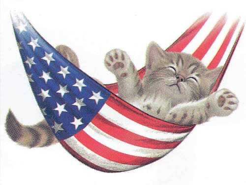 HAPPY 4TH OF JULY 4th-of-july-kitten