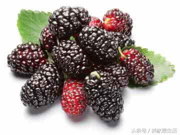 胃不好的你,吃這六種水果最適合! 2