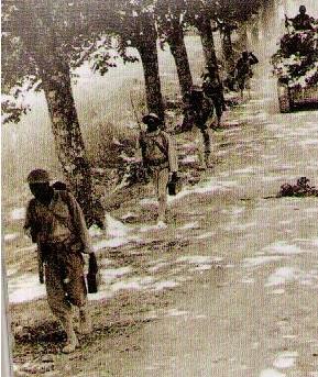 L'Armée Française de Libération Sanstitre55