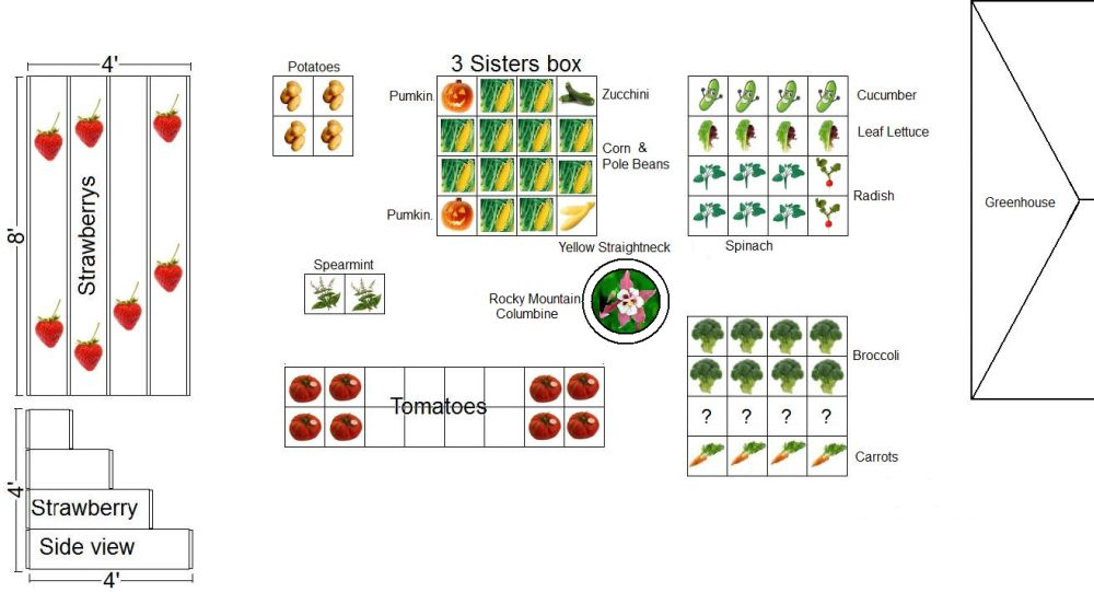 lets see your garden plan Garden-Plan2013