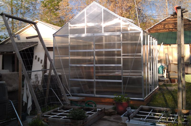 Almost a Greenhouse! Greenhouse