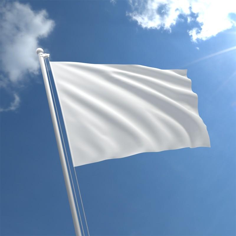 SAKON VS SAKAMOTO KING White-flag-std