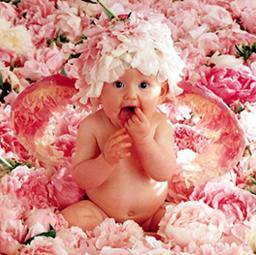 Ta divna mala stvorenja-male bebe-fotografije Bebe