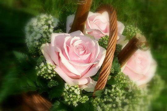 Bon Samedi 418925-un-bouquet-de-roses-pour-celle-qu-on-aime