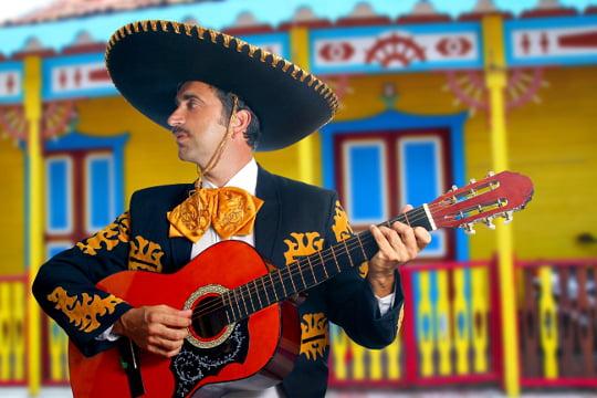 [Jeu] Suite d'images !  - Page 4 1155153-le-sombrero-mexicain