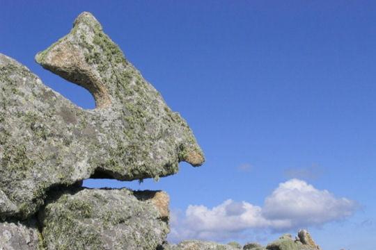 l'île mystérieuse de Martin trouvée par Md - Page 3 321096-le-dinosaure