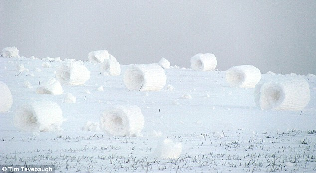 Self-rolling snow balls  Article-0-04818F32000005DC-760_634x347