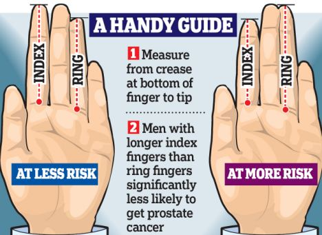Prostate cancer is now predicted through ring-finger's length Article-1334573-0C4C4019000005DC-883_468x341