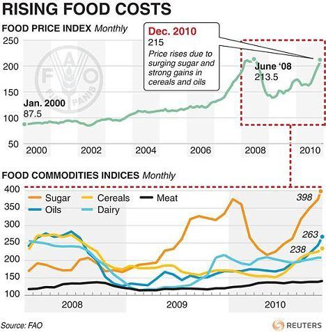 La crise alimentaire - Page 7 Article-1350009-0CE326B0000005DC-866_468x477