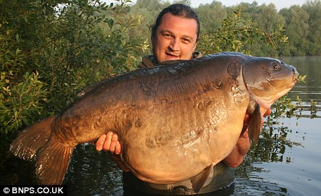 صور اضخم سمكة فى انهار وبحيرات انجلترا Article-2019356-0D2E9FA100000578-840_468x286