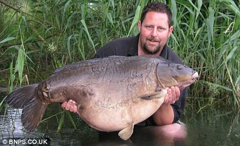 صور اضخم سمكة فى انهار وبحيرات انجلترا Article-2019356-0D2EA13F00000578-149_468x286