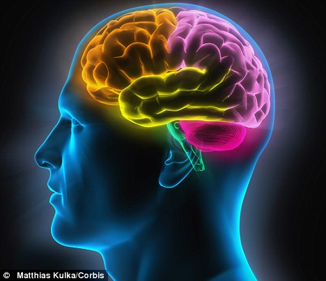 Outstanding Facts and Curiosities About Human Brain Article-2020546-0B3C6CD200000578-128_468x403