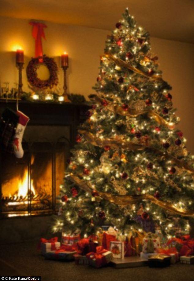 Christmas Tree  Article-2526938-1A3818B900000578-804_634x915