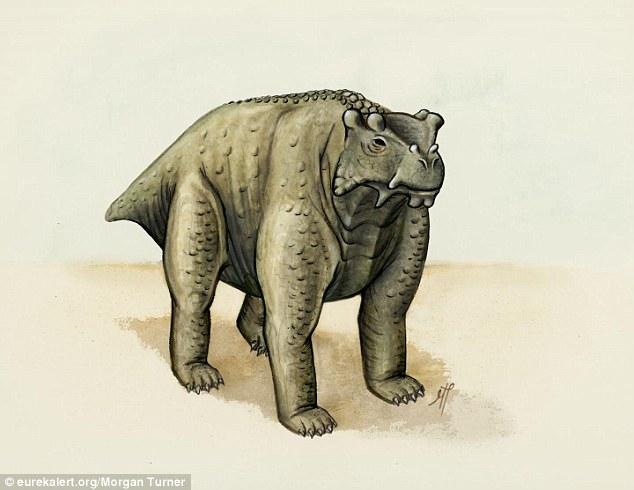 Geneologists have traced Diane Abbotts ancestors 2C797B3F00000578-3240343-image-a-1_1442598483320