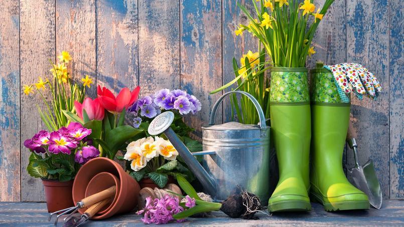 La saveur du printemps de Emilie Richards XVM0a15d48e-0d7d-11e7-9af1-a7debc100a78