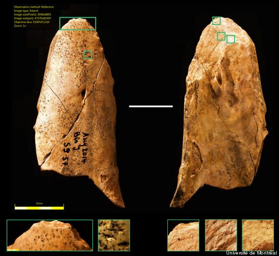La découverte de cet outil préhistorique nous rapproche de l'homme de néandertal O-OUTILS-EN-OS-570