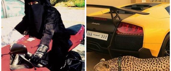بالصور.. حيوانات نادرة وأسلحة ذهبية.. حسابٌ على إنستغرام يوثِّق بذخ الشباب السعودي N-SAUDI-large570