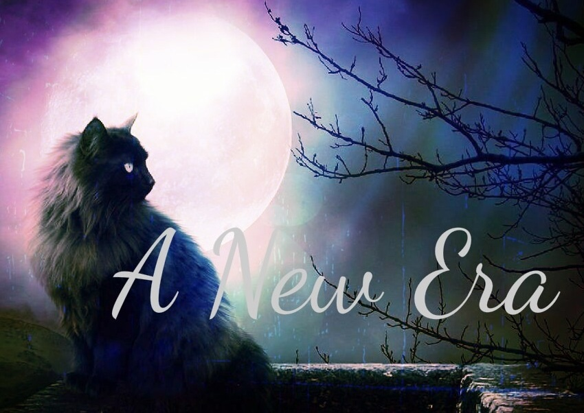 Warrior Cats Roleplay - A New Era