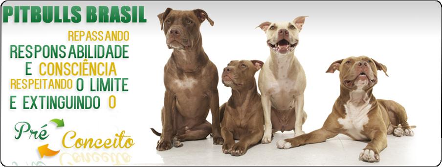 Pit Bulls Brasil