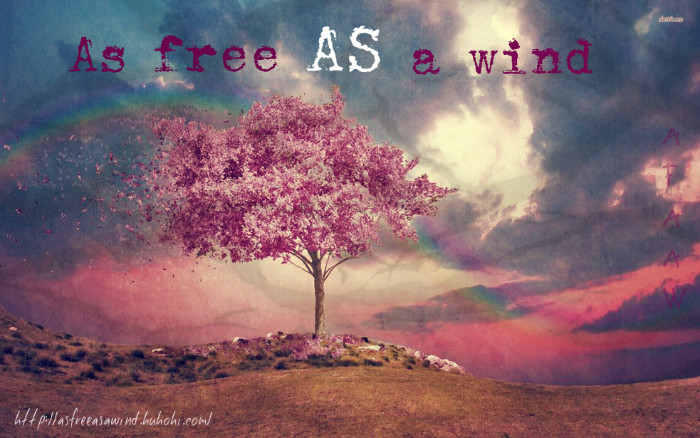 As Free As A Wind