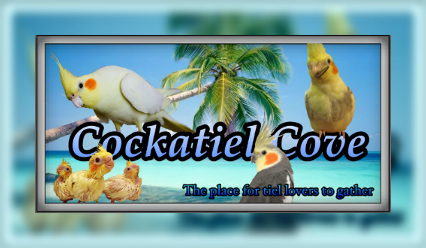 Cockatiel Cove