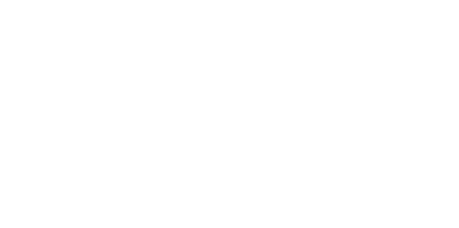 The American Dreams