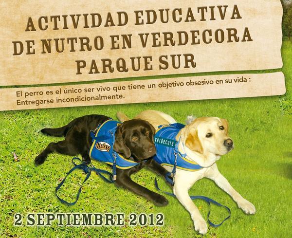 Actividad educativa en Parquesur (Madrid) 2  septiembre B58d3c8628e4dc7272b6f0f3f837f0e9