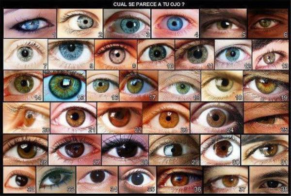 """""""Ojos verdes son traidores, azules son mentireiros...  marrones y acastañados son firmes y verdadeiros..."""" 247214bafa6b72df6ad2bac04d48fda4"""