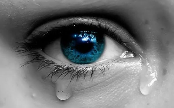 """Ojos verdes son traidores, azules son mentireiros...  marrones y acastañados son firmes y verdadeiros..."" - Página 2 E8d5fb6a7f4c58296ee73237c725b1c0"