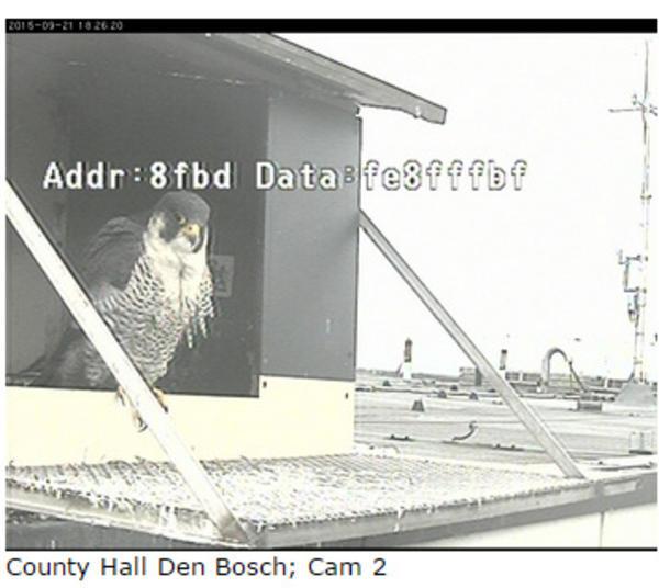 Den Bosch/Provinciehuis - Pagina 7 42f508f6d688cd4f70a88455966f2608