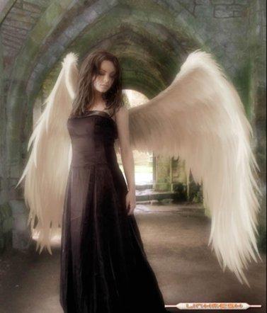 Полеты во сне и не наяву Angel_500