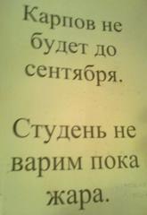 Если сможем - всем миром поможем Ирине Тищенко - Страница 11 Foto1634_240