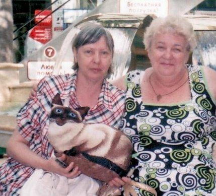 Если сможем - всем миром поможем Ирине Тищенко - Страница 11 Koshka_Syama_500