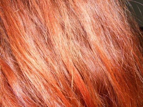ХНА для волос - отзывы - Страница 2 _Fh_fi01540DSCN4034_500