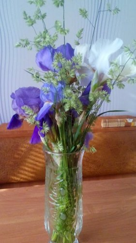 И у цветов весна)) DSC_0862_500