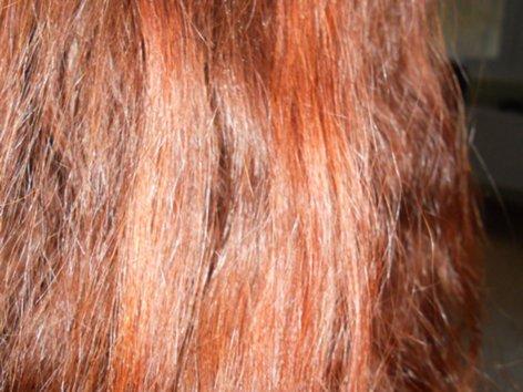 ХНА для волос - отзывы - Страница 2 _Fh_fi01313DSCN4033_500
