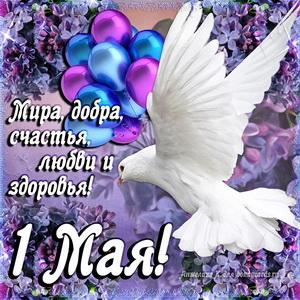 Наши праздники - Страница 8 S_1maya0034