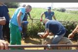 Nudimo dobro placen posao u Hrvatskoj 762Mp