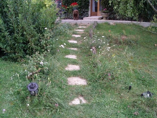 Création d'un escalier 1_copi10