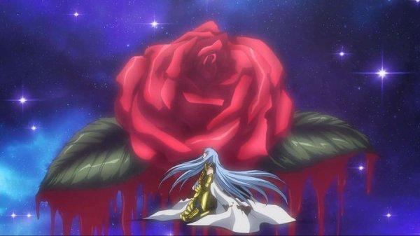 Le champs de roses sanguinaires 3109297381_1_2_vzulFws2