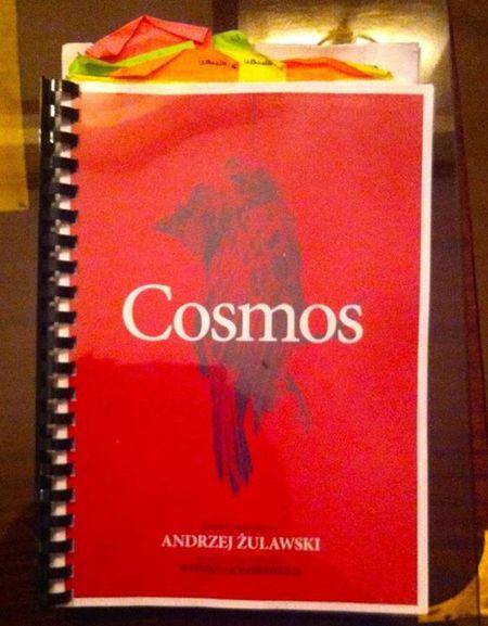 Razno razno razno Cosmos_450