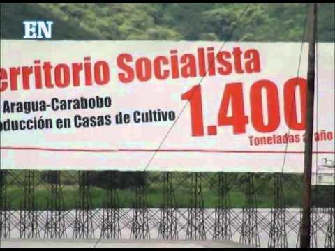 La Corrupción y el Socialismo del Siglo XXI 0