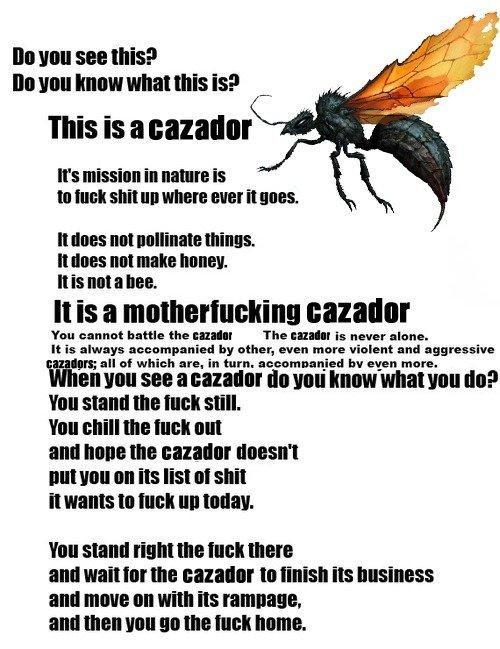 Ever wondered how bad a real Cazador sting is? 176