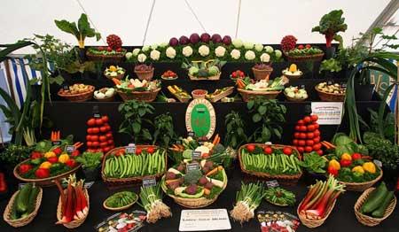 عرض الخضروات 8