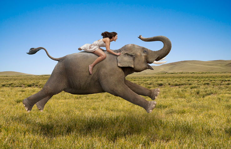 les éléments - Page 18 Elephant_and_sexy_women_realist_oil_painting