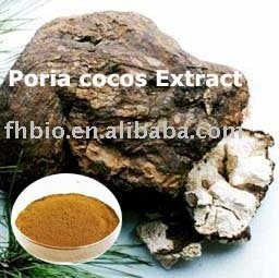 SƯU TẬP NẤM - Page 4 Fu_Ling_Extract_Poria_Cocos_Extract_
