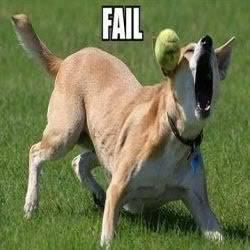 Funny animals Dogfailthumb