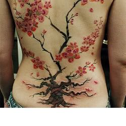 Tattoo thread. Cherryblossomtat1