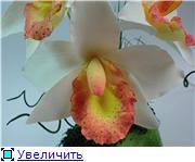 Цветы ручной работы из полимерной глины - Страница 4 Cc6314550789t