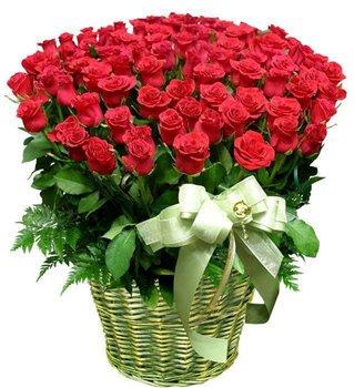 Поздравляем с Днем Рождения Машу (Lyana) F69d5d6e840dt